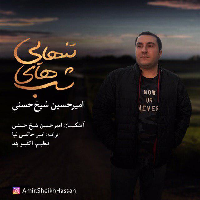 دانلود آهنگ جدید امیرحسین شیخ حسنی به نام شبهای تنهایی